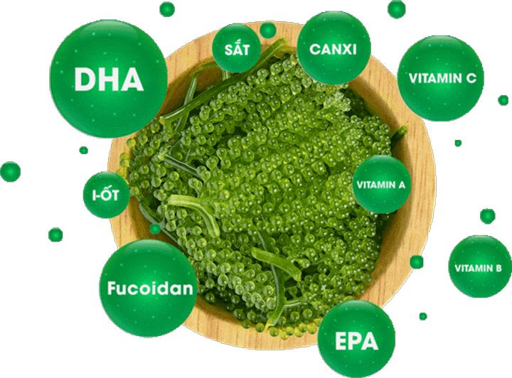 thành phần dinh dưỡng của rong nho trường thọ