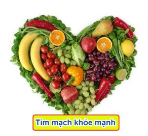 tim mạch khỏe mạnh